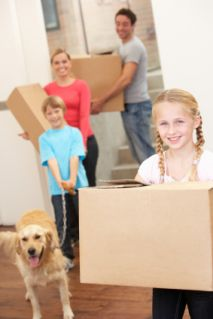Make Packing An Effortless Process By Getting Professional Help